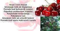 Višnja - Riznica vitamina