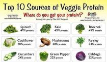 Top 10 izvora za proteine