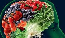 Hrana kao lijek i istine o hrani