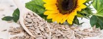 Štangice od sjemenki - Zdravi međuobrok
