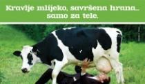 Zobeno mlijeko iz kućne radinosti za manje od 3 kune po litri